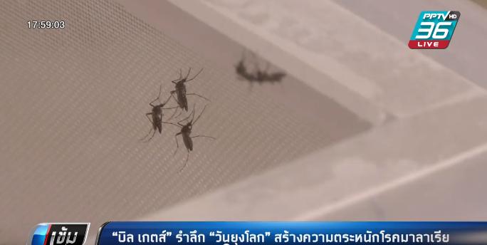 """""""บิล เกตส์"""" รำลึก """"วันยุงโลก"""" สร้างความตระหนักโรคมาลาเรีย"""