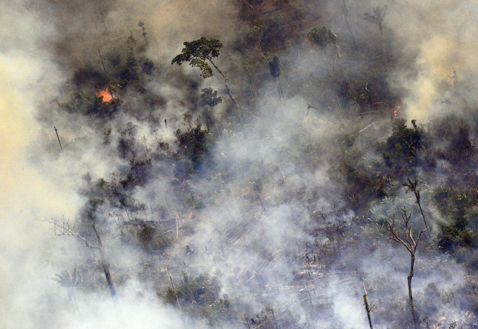 รัฐบาลบราซิลส่งทหารดับไฟป่าแอมะซอน