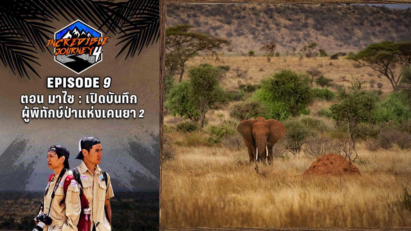 มาไซ : เปิดบันทึกผู้พิทักษ์ป่าแห่งเคนย่า 2