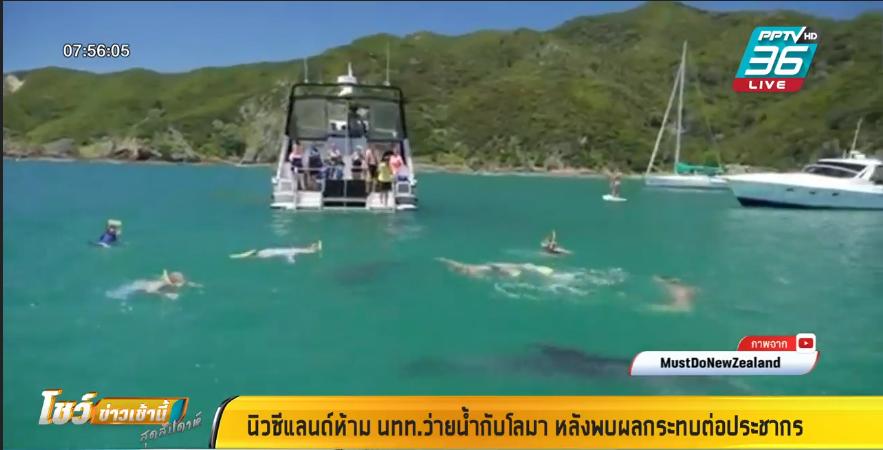 """นิวซีแลนด์ ห้ามนักท่องเที่ยวว่ายน้ำกับ """"โลมา"""""""