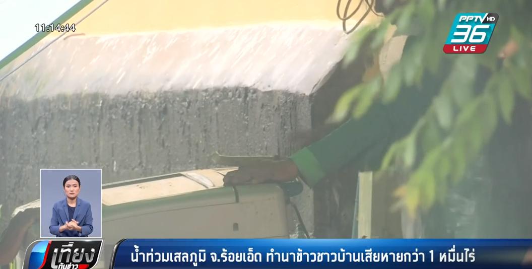 น้ำท่วมเสลภูมิ จ.ร้อยเอ็ด ทำนาข้าวชาวบ้านเสียหายกว่า 1 หมื่นไร่