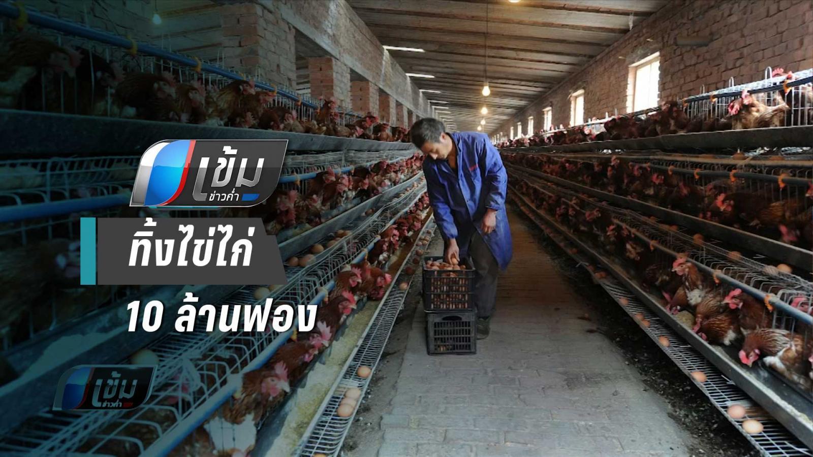 รบ.อินโดฯ หนุน ทิ้งไข่ไก่ 10 ล้านฟอง พยุงราคาไก่