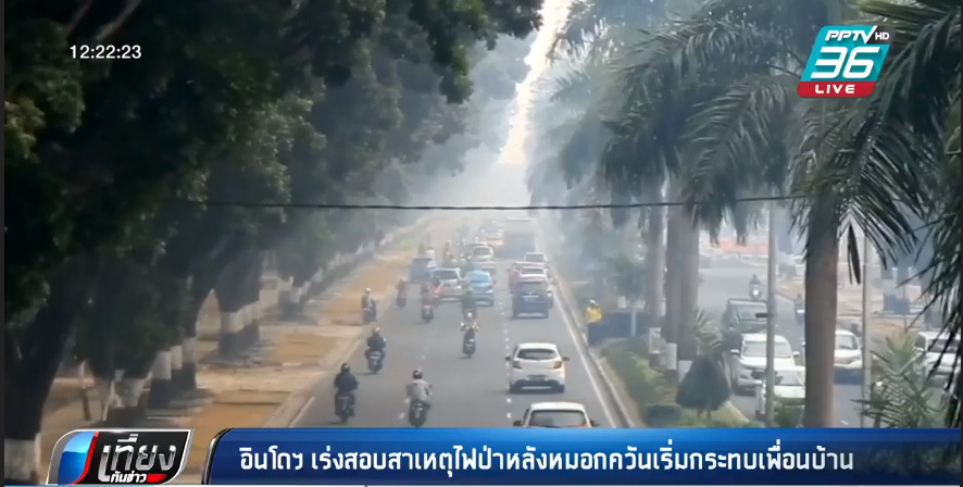 อินโดฯ เร่งสอบสาเหตุไฟป่าหลังหมอกควันเริ่มกระทบเพื่อนบ้าน