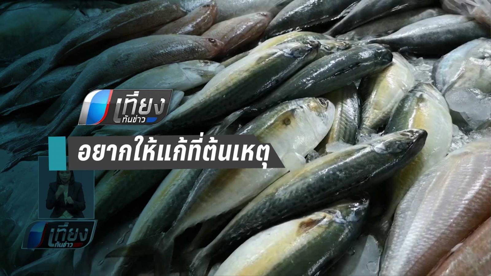 เปิดใจนักวิจัย ไมโครพลาสติกในปลาทู