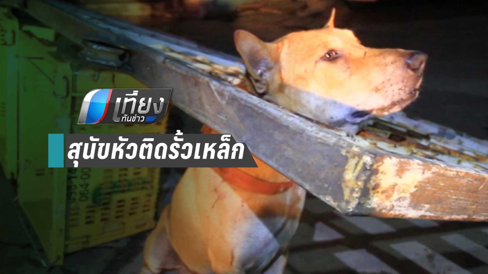 กู้ภัยปทุมฯ ช่วยน้องหมา หัวติดรั้วเหล็ก