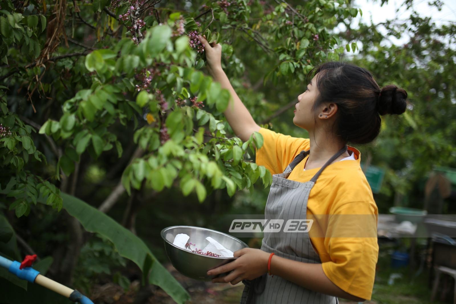 """สูตรสำรับอาหารจากวัตถุดิบท้องถิ่นบน """"ภูหลวง"""" ด้วยฝีมือระดับเชฟโจ้สร้างมูลค่าพืชผลเพื่อชาวบ้าน"""