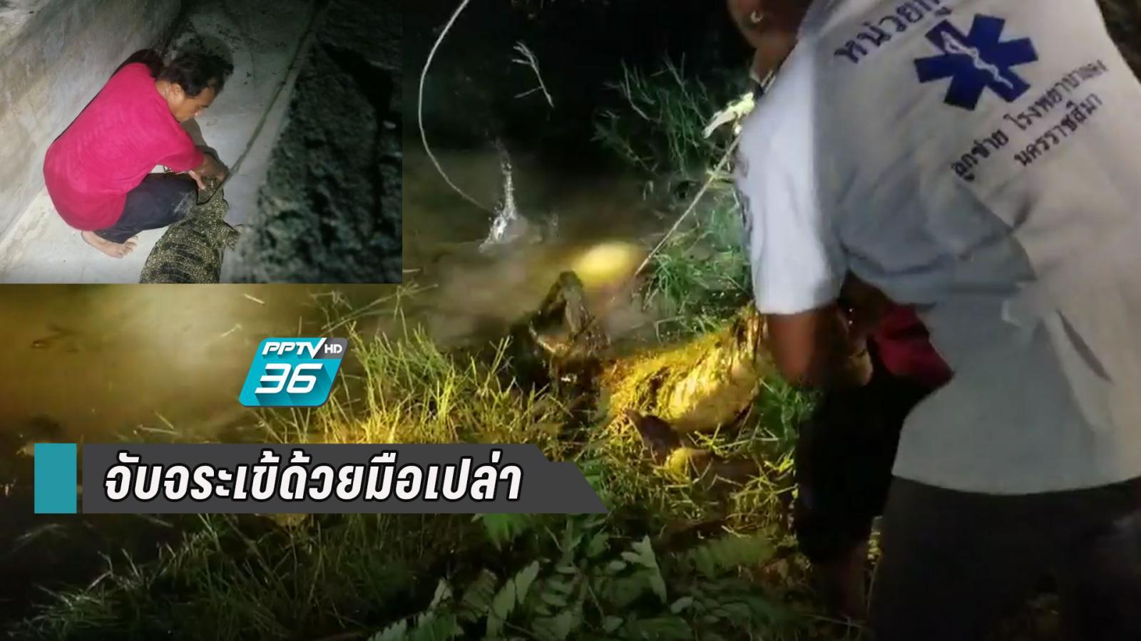 กู้ภัยสวมบทไกรทอง ใช้มือเปล่าดึงหางจระเข้ขึ้นมาจากน้ำ