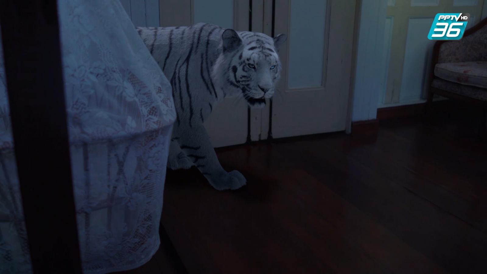ฟินสุด | มีชีวิตในร่างเสือเพื่อลูก | ฝ่าดงพยัคฆ์ EP.30 | PPTV HD 36
