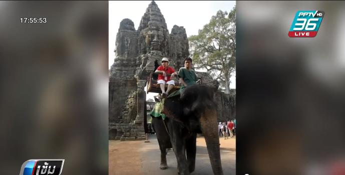 กัมพูชาเตรียมยกเลิกขี่ช้างชมนครวัดปีหน้า
