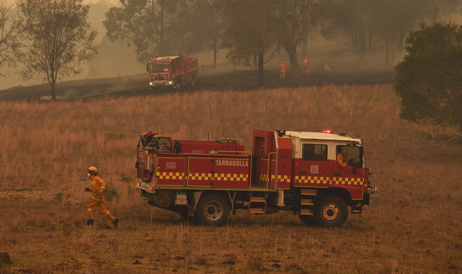 ไฟป่าออสเตรเลียยังวิกฤต! กระทบทั่วทั้งคนและสัตว์ป่า