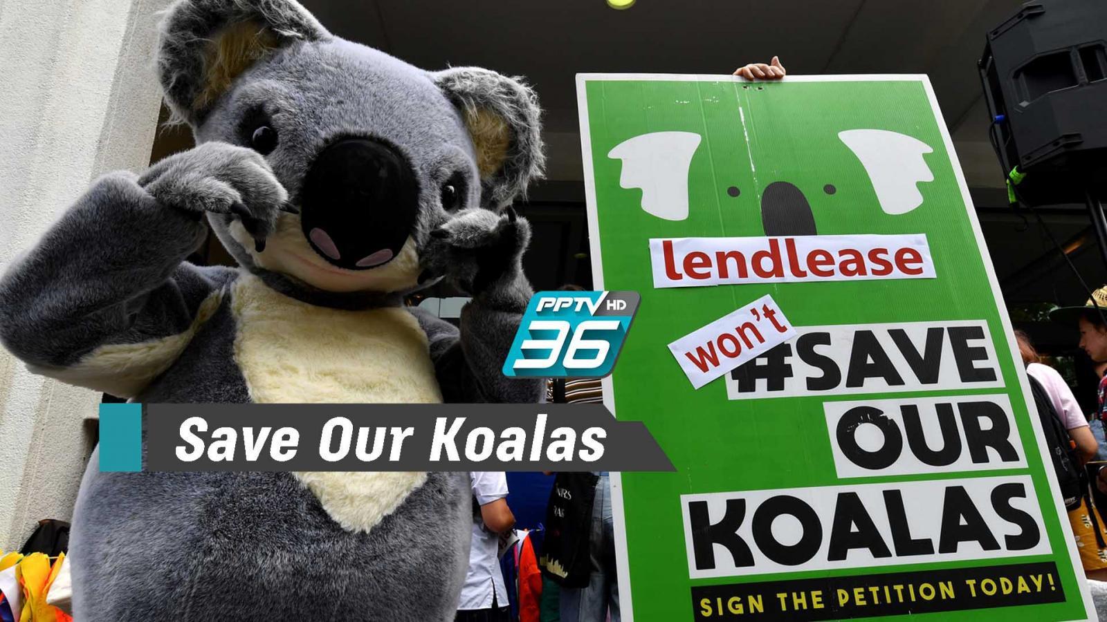 นักเคลื่อนไหวสวมชุด 'โคอาลา' เรียกร้องแก้ปัญหาวิกฤตไฟป่า