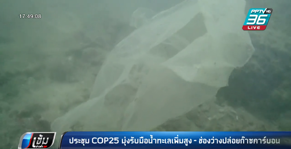 ประชุม COP25 มุ่งรับมือน้ำทะเลเพิ่มสูง – ช่องว่างปล่อยก๊าซคาร์บอน