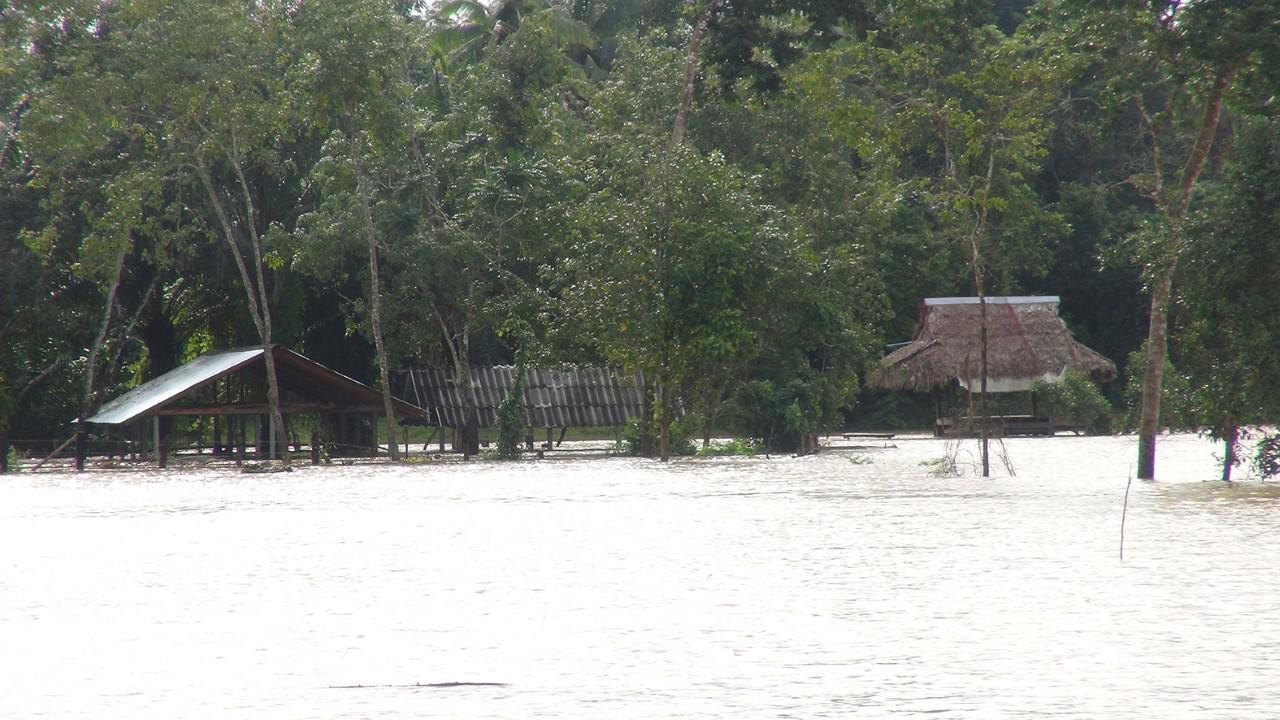 ฝนกระหน่ำ 'นราธิวาส-ยะลา' ส่งผลน้ำท่วมหลายพื้นที่