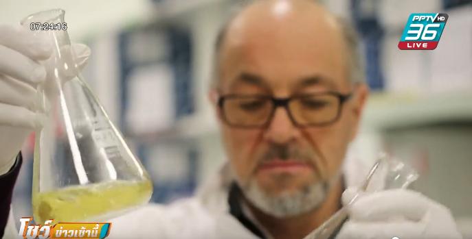 นักวิทย์พบวิธีเลี้ยงห่านให้ได้ตับที่มีไขมันเกาะ