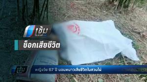 หญิงวัย 67 ปี นอนหนาวเสียชีวิตในสวนไผ่ คาดอากาศเย็นจึงช็อก
