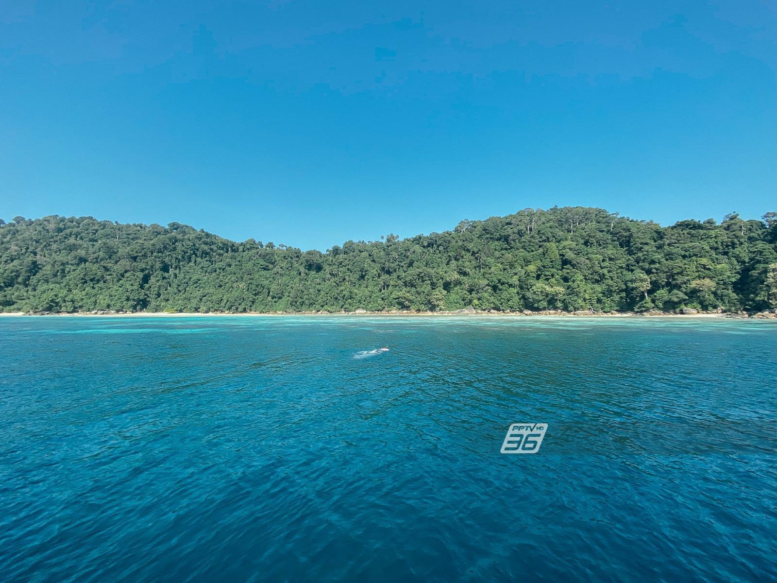 """สัมผัสโลกแห่งท้องทะไลไทย """"หมู่เกาะสุรินทร์"""" สวรรค์ของนักดำน้ำทั่วโลก"""