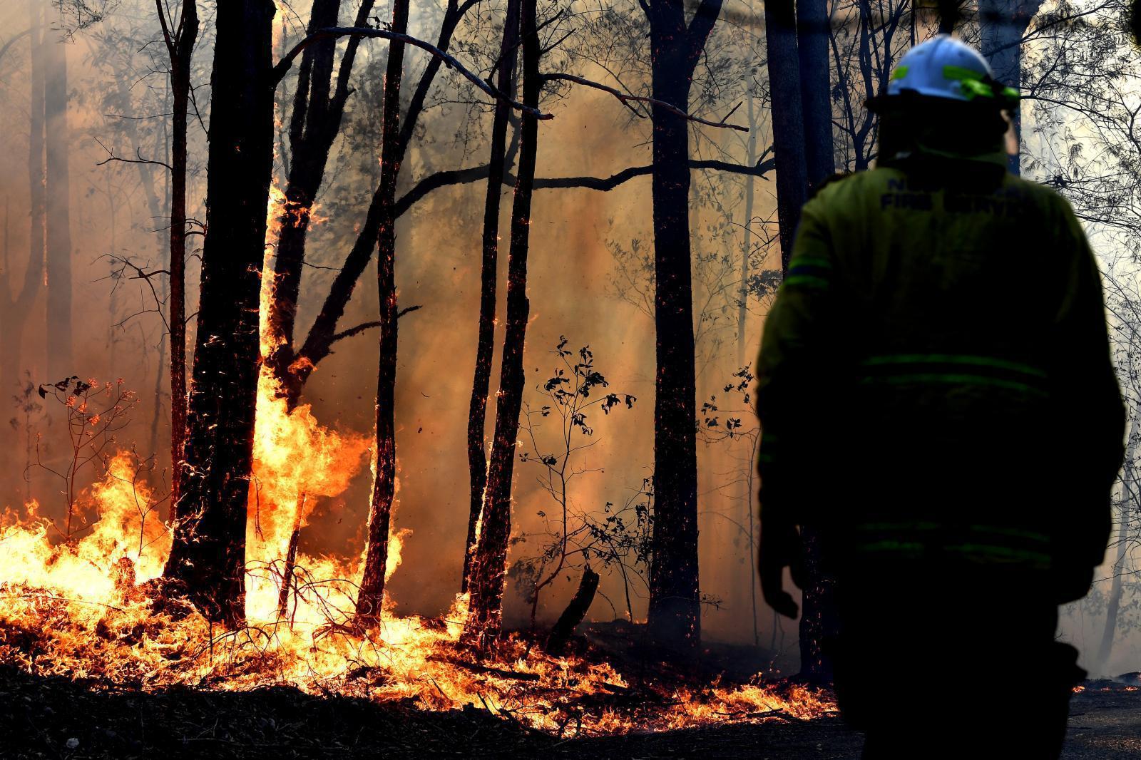 รัฐบาลออสเตรเลียจ่ายค่าตอบแทนอาสาสมัครดับไฟป่า  1.2 แสนบาท