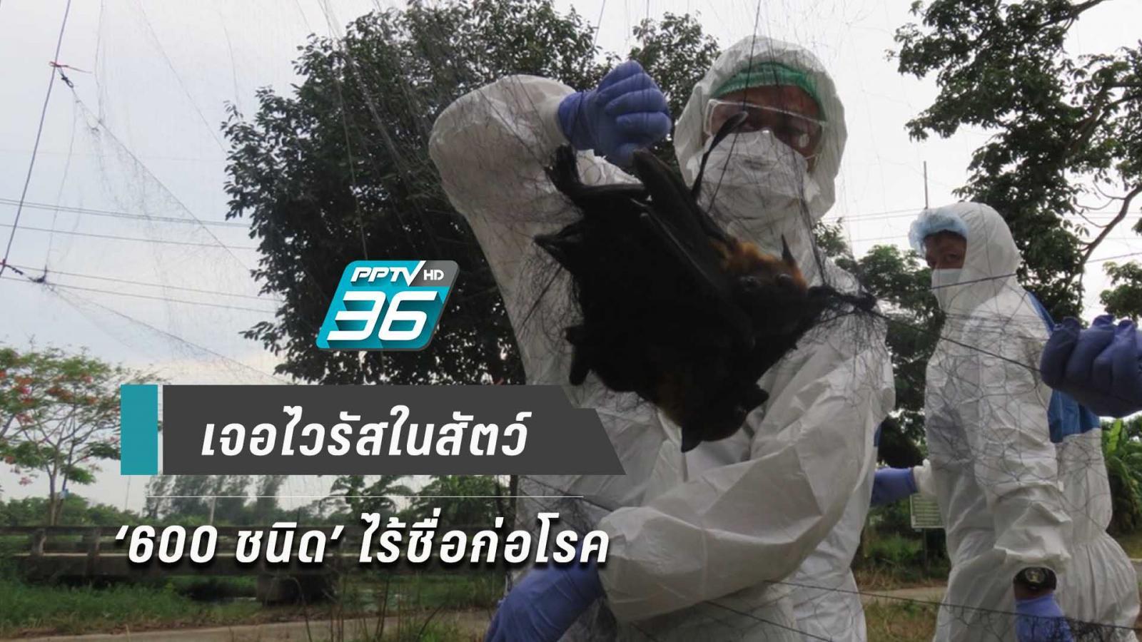 หมอจุฬาฯ เผย ปี 63 เฝ้าระวัง 'เชื้อไวรัส 600 ชนิด' ไร้ชื่อ เสี่ยงติดสัตว์นำโรคสู่คน