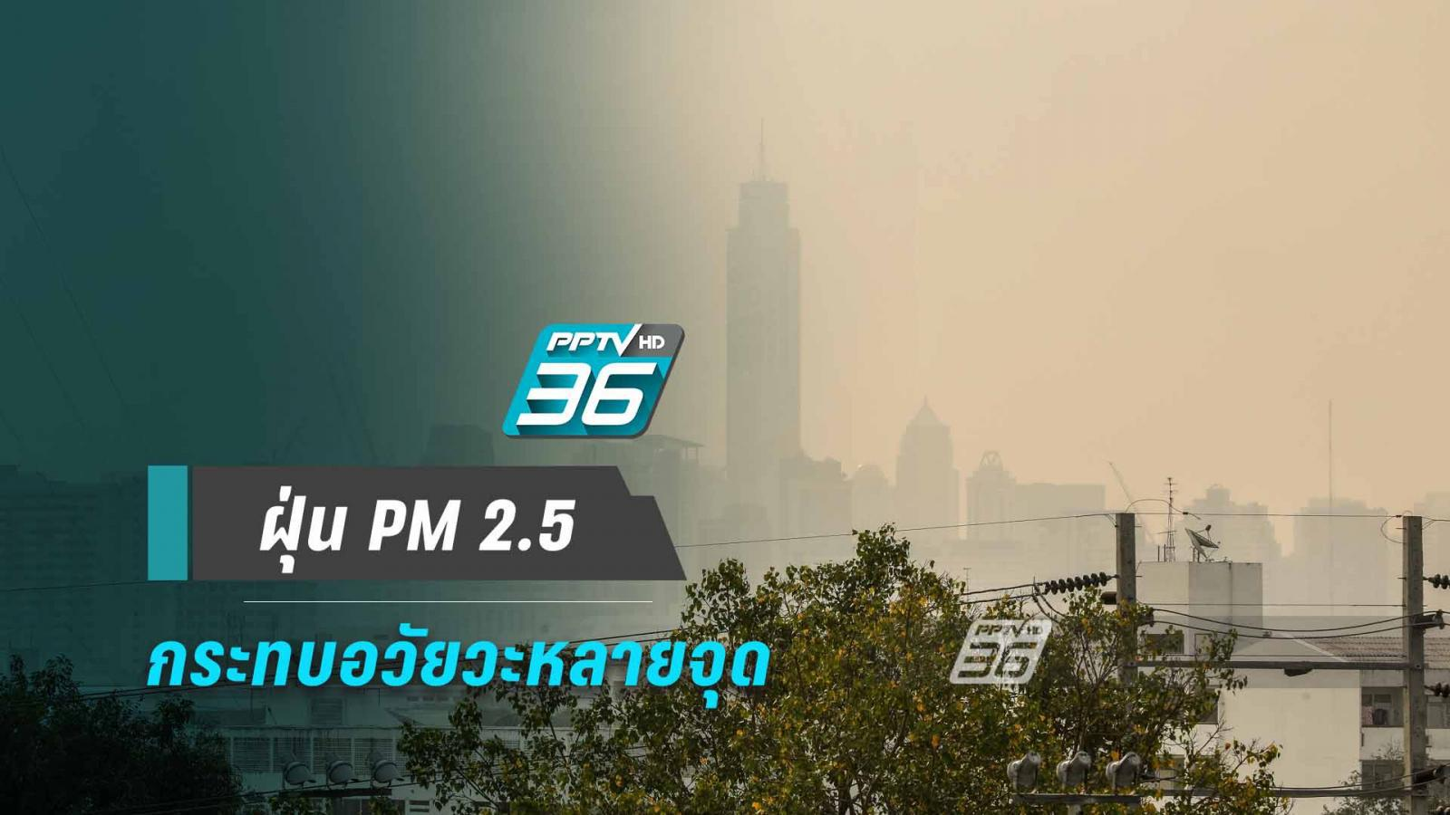 ฝุ่น PM 2.5 กระทบร่างกายหลายระบบ 'ทางเดินหายใจ-หัวใจ-ผิวหนัง'