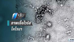 จีน ยอดผู้ติดเชื้อไวรัสโคโรนาแล้ว 881 ตาย 26 คน
