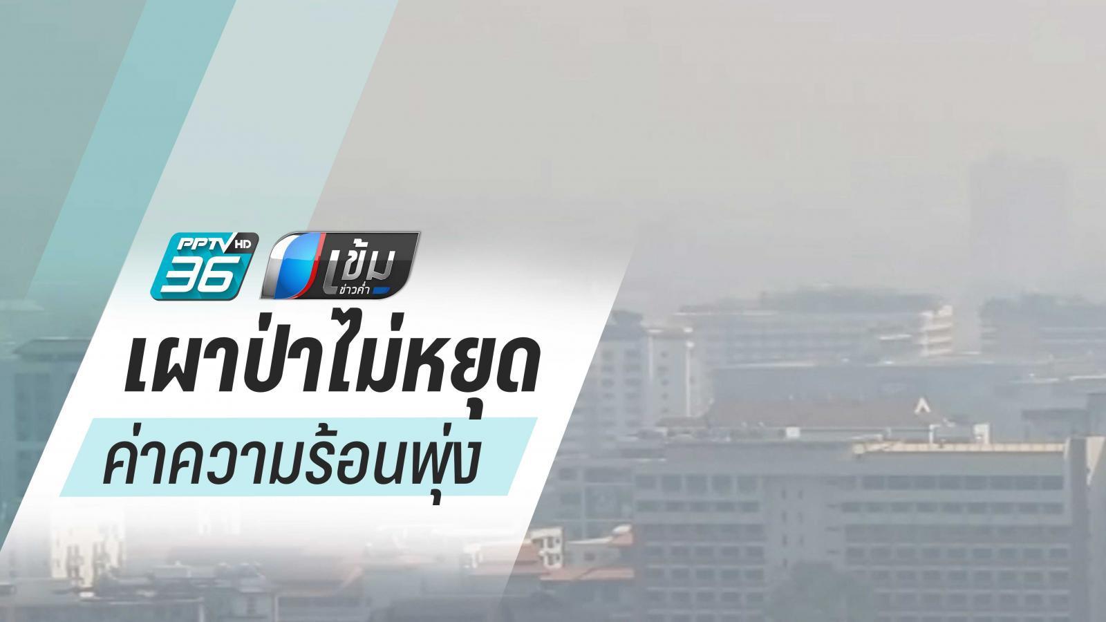 เหนือเผาป่าไม่หยุด ค่าความร้อนพุ่ง 195 พื้นที่ เชียงใหม่จมฝุ่นพิษ PM2.5