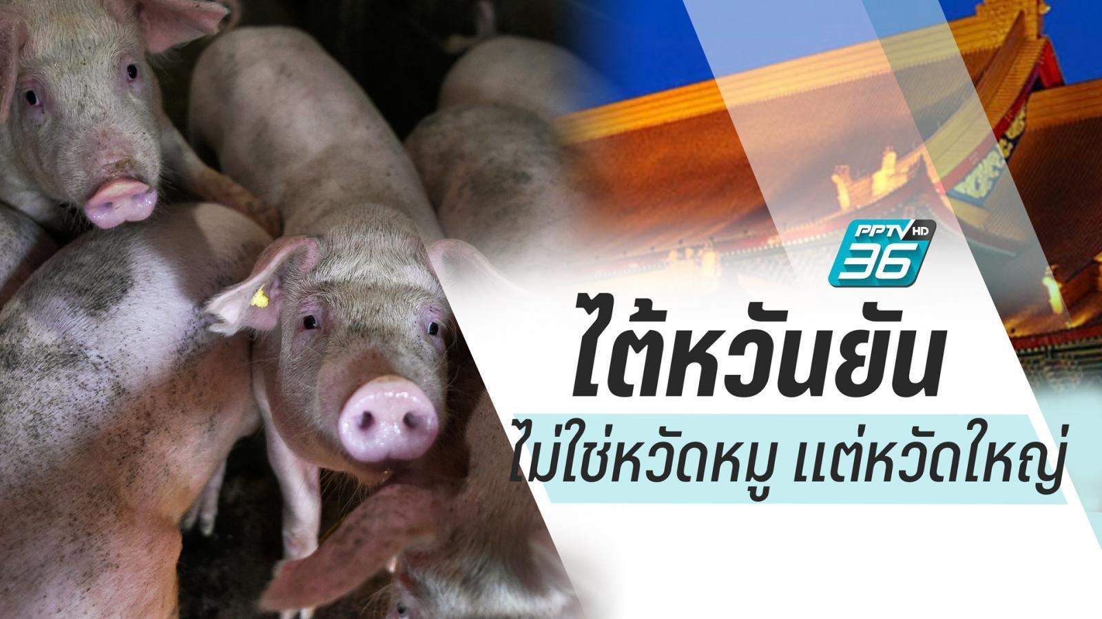 """ไต้หวันแจงประเทศไม่มีระบาด """"ไข้หวัดหมู"""" มีแต่ """"หวัดใหญ่(H1N1)"""""""