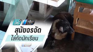 จนท.ตรวจสอบสุนัขจรจัด ไล่กัด นักเรียน-ผู้ปกครอง เจ็บ 4 คน