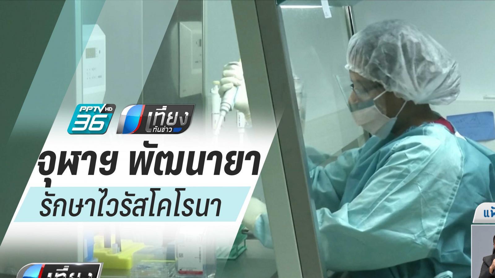 จุฬาฯ พัฒนายารักษาไวรัสโคโรนาผ่านต้นยาสูบ