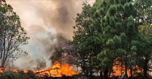 ไฟป่าภูกระดึง โหมหนัก เสียหายหนักกว่า 2 พันไร่