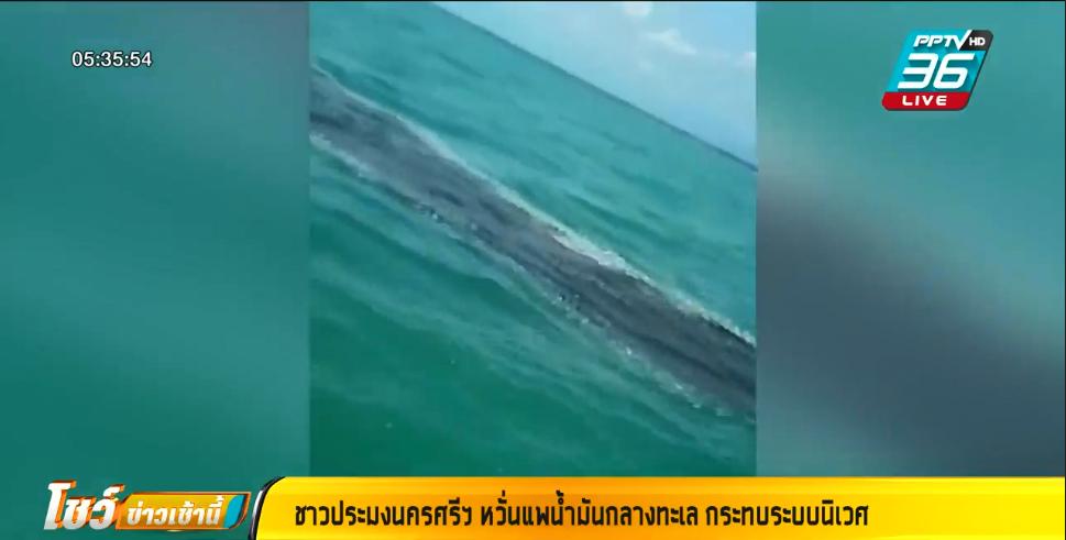 ชาวประมงฯ พบแพน้ำมันขนาดใหญ่กลางอ่าวไทย หวั่นกระทบระบบนิเวศ