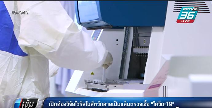 """เปิดห้องวิจัยไวรัสในสัตว์กลายเป็นแล็บตรวจเชื้อ""""โควิด-19"""""""