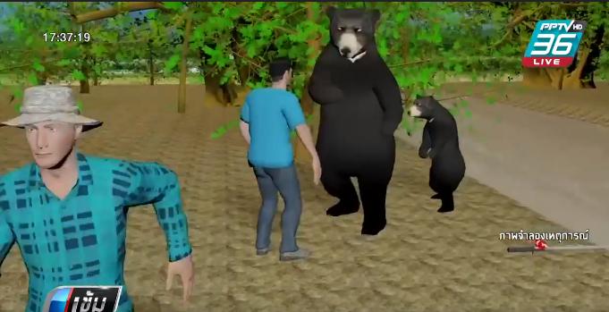 หมีตะปบชาวบ้านเข้าไปจับปลาในป่าบาดเจ็บสาหัส