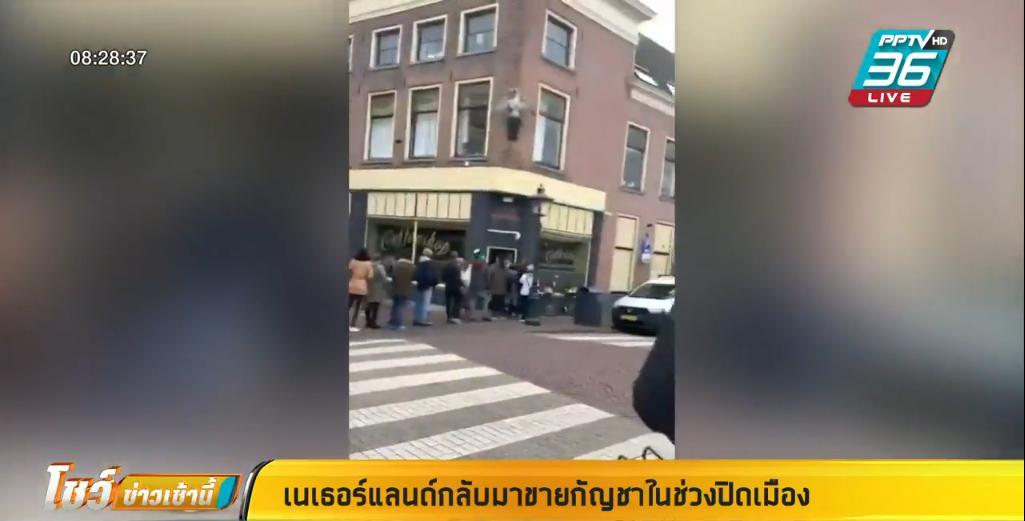 """สายเขียวเฮ ! """"เนเธอร์แลนด์"""" กลับมาขายกัญชา ในช่วงปิดเมือง"""