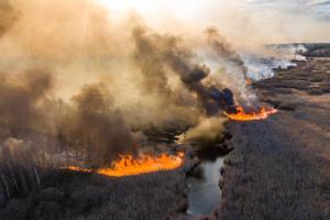กรีนพีซเตือนไฟป่ายูเครนลุกลามใกล้ถึงโรงไฟฟ้าเชอร์โนบิล