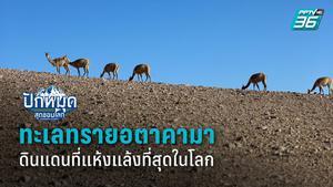 ทะเลทรายอตาคามา ดินแดนที่แห้งแล้งที่สุดในโลก