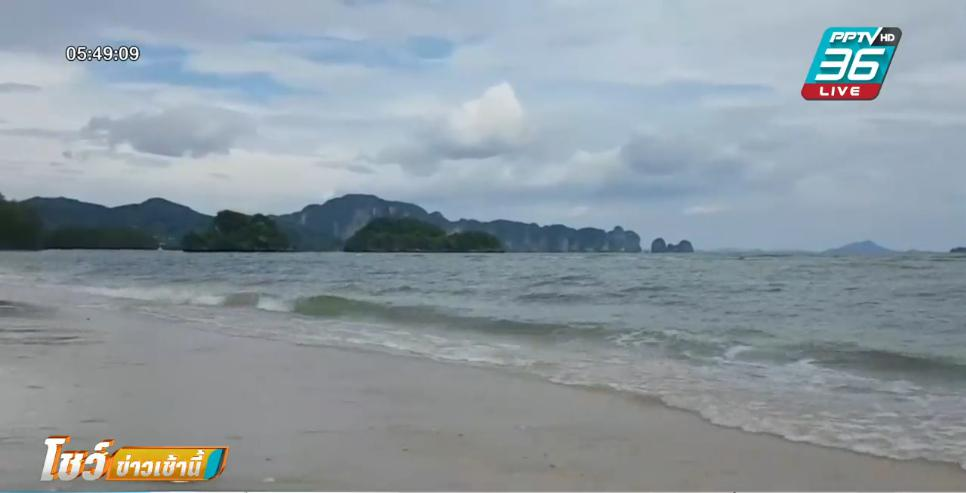 ธรรมชาติฟื้นตัว ดาวทะเลนับพันตัว ออกมาโชว์ตัวยามไร้นักท่องเที่ยว