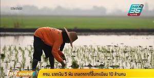 เยียวยาเกษตรกร 5,000 บาท 3 เดือน 10 ล้านราย