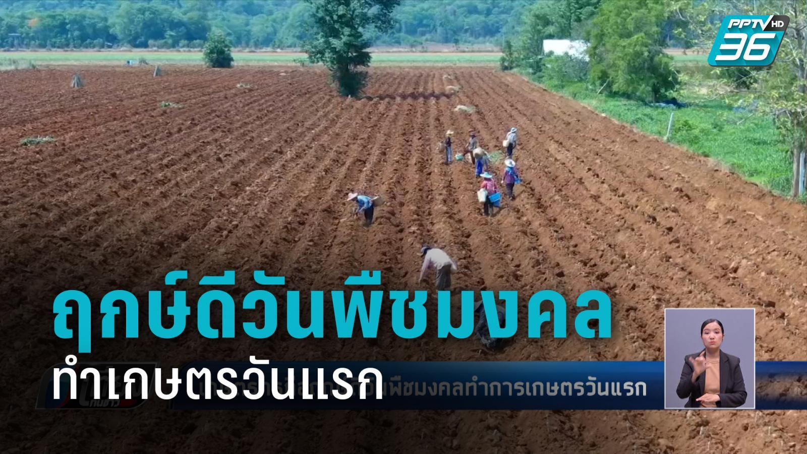 แรกนาขวัญ ฤกษ์ดีวันพืชมงคลทำการเกษตรวันแรก
