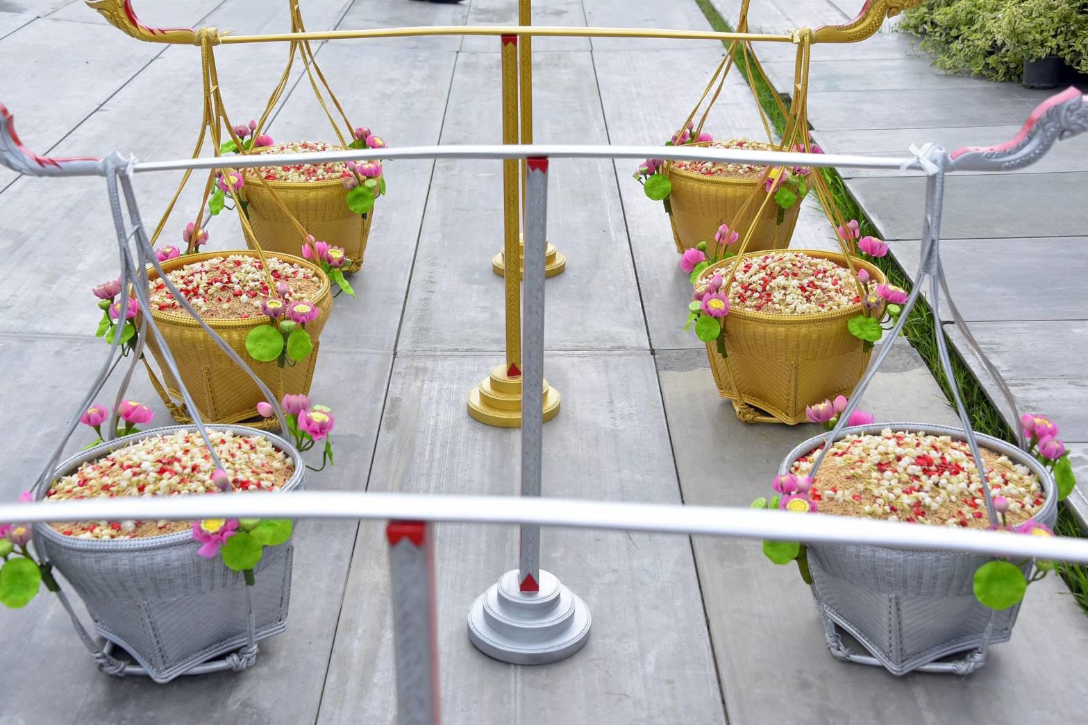 วันพืชมงคล , พันธุ์ข้าวพระราชทาน , แรกนาขวัญ , วันสำคัญ , วันพืชมงคล 2563 , พิธีหว่านข้าวในแปลงนาทดลอง