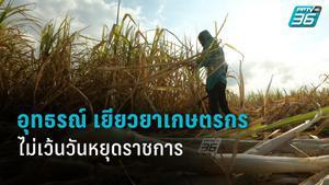กระทรวงเกษตรและสหกรณ์ เปิด 8 หน่วยงาน ยื่นอุทธรณ์ เยียวยาเกษตรกร