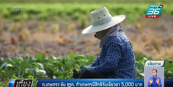 กระทรวงเกษตรและสหกรณ์ ยัน ขรก. ทำเกษตรมีสิทธิรับเยียวยา 5,000 บาท