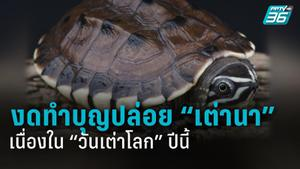 """อนุรักษ์เต่าในวันเต่าโลก  ได้ง่าย ๆ เพียงงดทำบุญปล่อย """"เต่านา"""""""