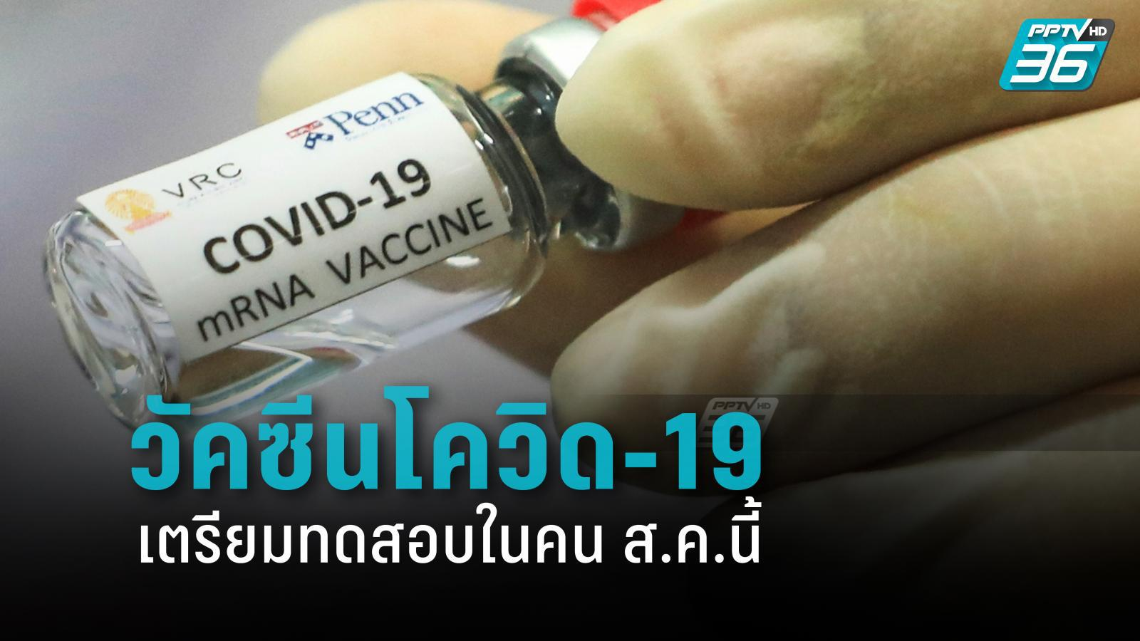 นักวิจัยไทย เริ่ม ทดสอบวัคซีนโควิด-19 ในลิง คาด ทดสอบในคน ส.ค.นี้