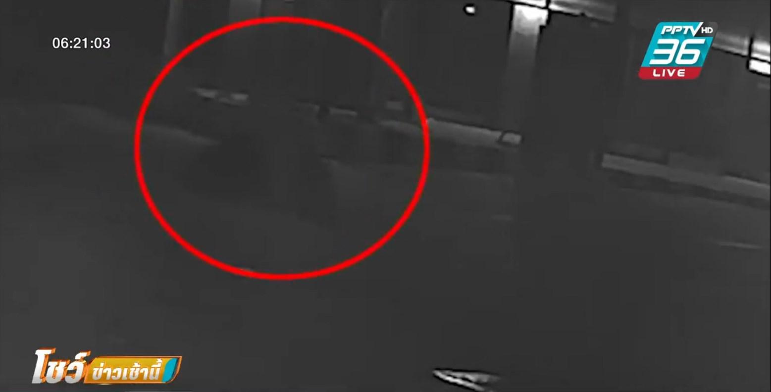 วงจรปิด จับภาพสาวประเภทสองฆ่าแฟนหนุ่ม ขนหลักฐานไปทิ้งขยะ
