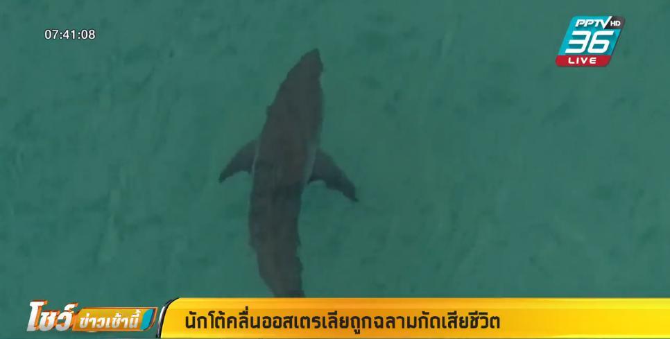นักโต้คลื่นออสเตรเลียถูกฉลามกัดเสียชีวิต
