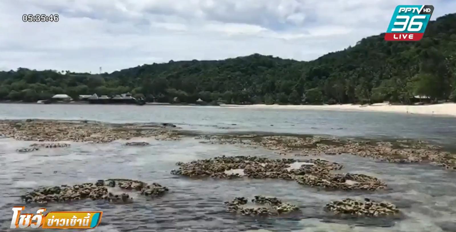 ปรากฎการณ์น้ำทะเลลดต่ำ ทำปะการังโผล่ที่เกาะทะลุ