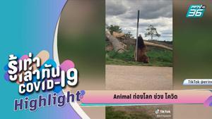 New Normal สวนสนุก สวนสัตว์