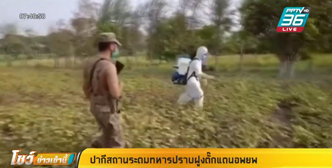 ปากีสถาน ระดมทหารปราบฝูงตั๊กแตนอพยพ