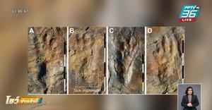 พบรอยเท้าปริศนาในเกาหลีใต้ คาดเป็นจระเข้โบราณเดิน 2 เท้า