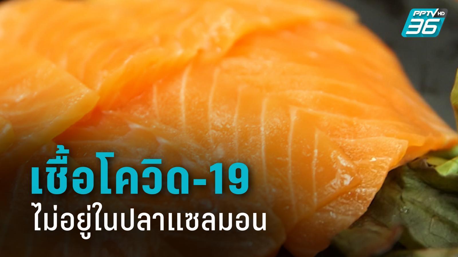 กรมควบคุมโรค เชื่อเชื้อโควิด-19 ไม่อยู่ในปลาแซลมอน
